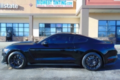 16 Mustang GT350 Elite